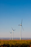 Turbinas del parque eólico, ecología Fotografía de archivo libre de regalías