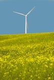 Turbinas eólicas em um campo de flores amarelas Fotografia de Stock Royalty Free
