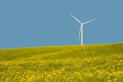 Turbinas eólicas em um campo de flores amarelas Foto de Stock Royalty Free