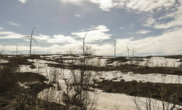 Turbinas eólicas na Suécia norte fotografia de stock royalty free