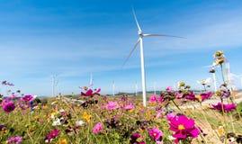 Turbinas eólicas no fundo da eletricidade da planta de energias eólicas do céu azul Fotos de Stock Royalty Free