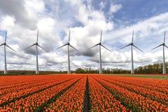 Turbinas eólicas da eletricidade em seguido Imagem de Stock Royalty Free