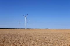 Turbinas eólicas no campo de trigo Fotos de Stock Royalty Free