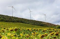 Turbinas Eolian da energia nos montes Fotografia de Stock Royalty Free