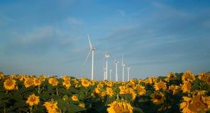Turbinas y girasoles de viento Fotos de archivo libres de regalías