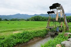 Turbine baler and rice field. In the morning royalty free stock images