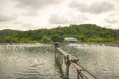 Turbine d'aération de l'eau dans l'agriculture aquatique Établissement d'incubation de crevette et de poissons Images stock