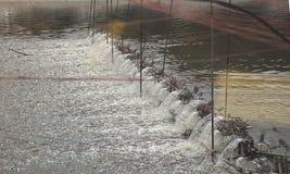 Turbine d'aération de l'eau dans l'agriculture aquatique Image stock
