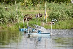 Turbine de l'eau dans l'étang Photographie stock libre de droits