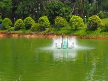 Turbine de l'eau fonctionnant dans l'étang Image libre de droits