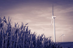 Turbine de vent Photographie stock