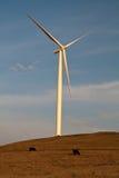 Turbine de vent avec des vaches Photographie stock libre de droits