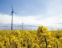 Turbine di vento, campo giallo. Fotografia Stock