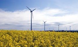 Turbine di vento, campo giallo. immagini stock