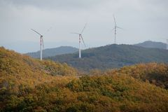 Turbine di vento, campo giallo Immagine Stock