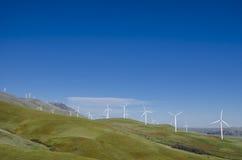Turbine di vento, campo giallo Fotografia Stock