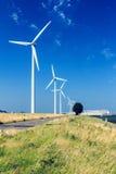 Turbine di vento, campo giallo Immagine Stock Libera da Diritti