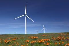 Turbine di vento generarici di forza motrice bianche, Wildflowers Fotografie Stock