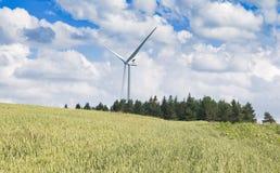Turbine di vento nel campo verde Immagine Stock