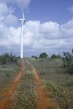 Turbine di vento in parco eolico Fotografia Stock