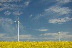 Turbine di vento sul campo del colza oleifero Fotografie Stock