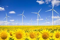 Turbine di vento sul giacimento dei girasoli Fotografie Stock