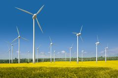 Turbine di vento in un giacimento del seme di ravizzone Immagine Stock