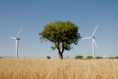 Turbine eoliche, in sud Italia Royalty Free Stock Images
