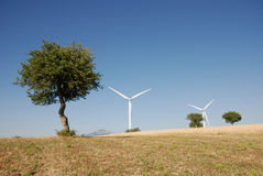 Turbine eoliche, in sud Italia Royalty Free Stock Photography