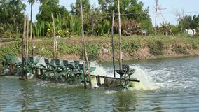 Turbine fill oxygen into water pond. Turbine fill air and fresh oxygen into clean water at fishing pond stock footage