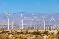 Turbine per produzione di energia elettrica, ramoscelli della palma, California dei mulini a vento Semplice di energia pulita Fotografia Stock Libera da Diritti