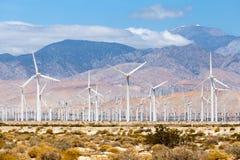 Turbine per produzione di energia elettrica, ramoscelli della palma, California dei mulini a vento Semplice di energia pulita Fotografia Stock