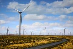 Turbinen-Windmühlen-Bauernhof stockfotografie