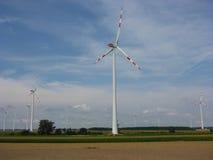 Turbiner för vindlantgård Royaltyfri Bild
