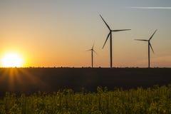 Turbines d'énergie éolienne sur le fond de ciel de coucher du soleil, nature de générateur d'énergie amicale Gisement jaune de co photographie stock libre de droits