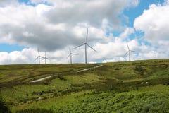 Turbines de ferme de vent bleues Photo libre de droits