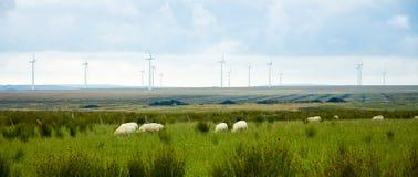 Turbines de puissance d'Eolic Image stock