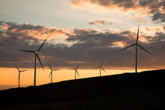 Turbines de vent au coucher du soleil Photos libres de droits
