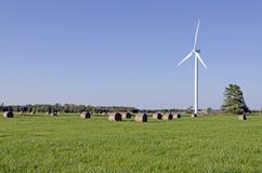 Turbines de vent dans le domaine vert Photographie stock libre de droits
