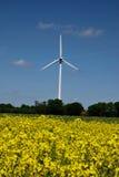 Turbines de vent dans un domaine des usines de graine de colza Photos stock