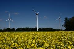 Turbines de vent dans un domaine des usines de graine de colza Photo libre de droits