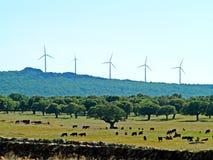Turbines de vent sur la campagne dans la prairie espagnole image stock