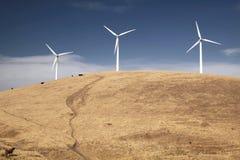 Turbines de vent sur une côte avec des vaches Photographie stock libre de droits