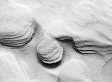 Turbinii della sabbia  immagine stock