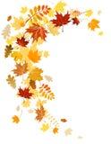 Turbinio dei fogli di autunno Fotografie Stock