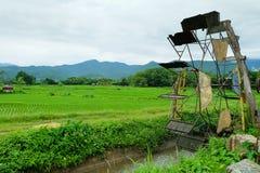 Turbinowy baler i ryż pole fotografia stock