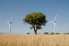Turbinowy eoliche w sud Italia, Obrazy Royalty Free