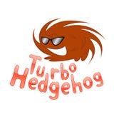 Turbo hedgehog. Vector illustration of turbo hedgehog wearing sunglasses Stock Images