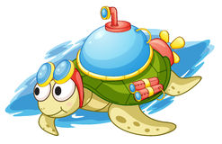 Turbo turtle Royalty Free Stock Photos