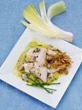 Turbot Stock Photography